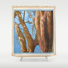 MADRONA TREE BY THE SEA Shower Curtain