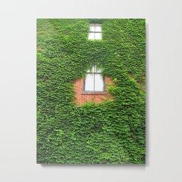 Ivy off Pine Street Metal Print