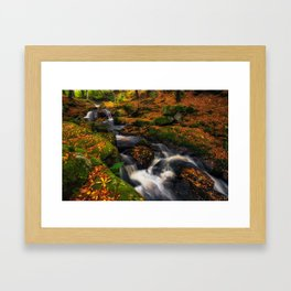 Cloghleagh River in Wicklow Mountains - Ireland (RR249) Framed Art Print