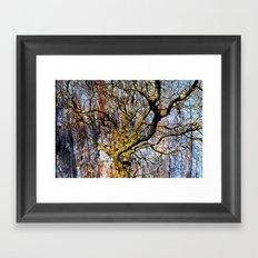 Magic Dream of a Tree Framed Art Print