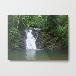 Forest of Water Metal Print