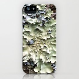 Nature's Fence Flowers iPhone Case