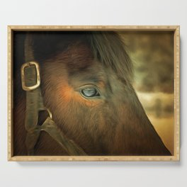 Horse Eye Close Up. Golden Age Painting Style. Serving Tray