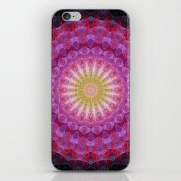 Mandala Emotion iPhone Skin