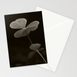 Oxalis elegant  Stationery Cards