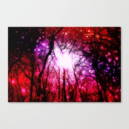 Romantic Wonderment Canvas Print