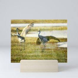 Sandhill Cranes Mating Dance Mini Art Print
