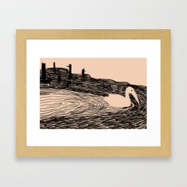 Shy Swan Framed Art Print