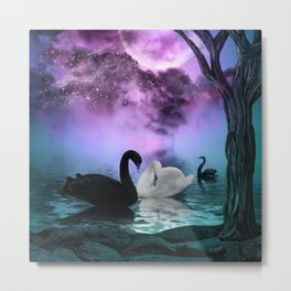Wonderful black and white swan Metal Print