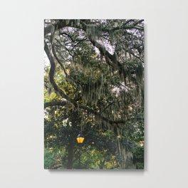 Savannah Forsyth Park V Metal Print