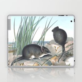 Mice in the reed overviewing the ocean Laptop & iPad Skin
