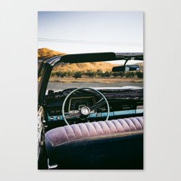fear and loathing ii Canvas Print