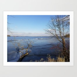 More Than Seven Swans A Swimming And A Sitting On The Second Day Before Christmas Art Print