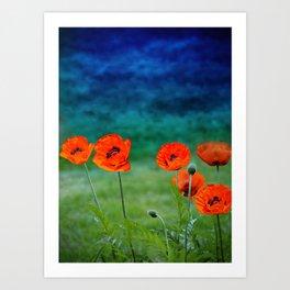 Poppies paradise Art Print