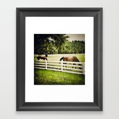 Florida horses Framed Art Print