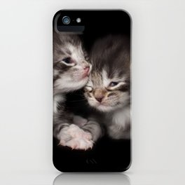 Two kitten brothers iPhone Case