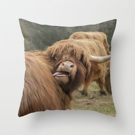 Funny Scottish Highland cow Throw Pillow