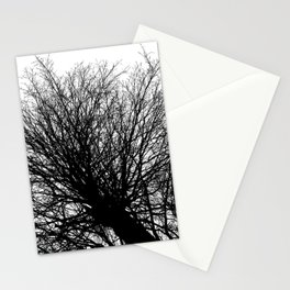 Branches 6 Stationery Cards