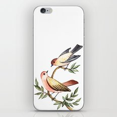 Bird lovers iPhone & iPod Skin