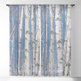 Birches 26 Sheer Curtain