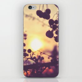 God is All iPhone Skin