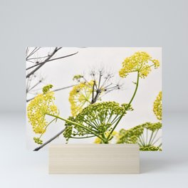 YELLOW WILD-FLOWERS of Sicily Mini Art Print