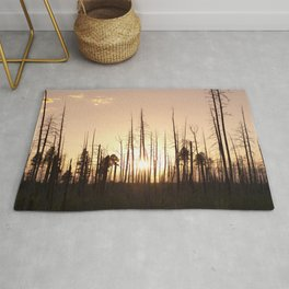 A Forest's End Rug