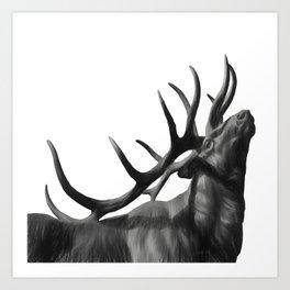 Elk in Black in White Art Print