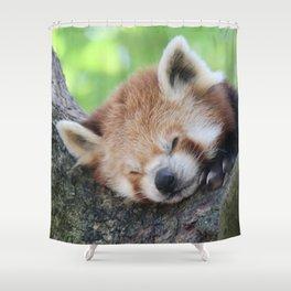 Red_Panda_20150705_by_JAMFoto Shower Curtain