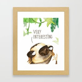Very Interesting Sloth Framed Art Print