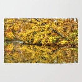 Reflections of Autumn Rug