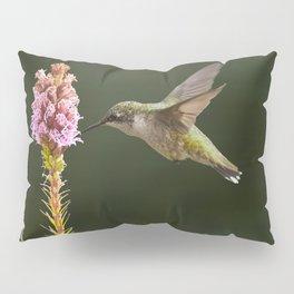 Hummingbird and flower II Pillow Sham