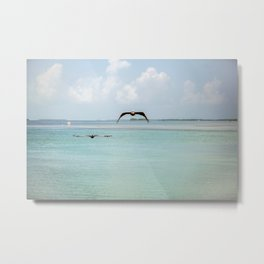 Flay Away With Me Metal Print