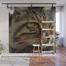 Aslan The Long Haired Tabby Cat Wall Mural