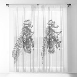 The Fly Sheer Curtain