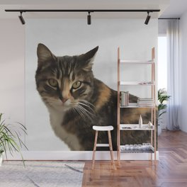 Tabby Cat With Ear Turned Sideways Wall Mural
