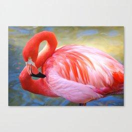 Caribbean Flamingo Canvas Print
