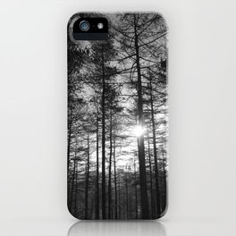 Winter Pine Forest 1 iPhone Case