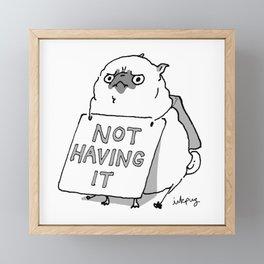 Not Having It - Angry Pug Framed Mini Art Print