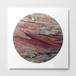 Planetary Bodies - Bark Metal Print
