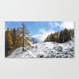 The Confluence Of The Seasons Canvas Print