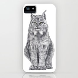 Bobcat from my area iPhone Case