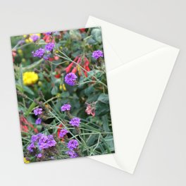 Cornwall Flower Garden Photo 1779 rough mix of colour and distance Stationery Cards