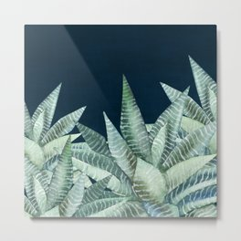 Succulent Garden (Snake Plant) Metal Print
