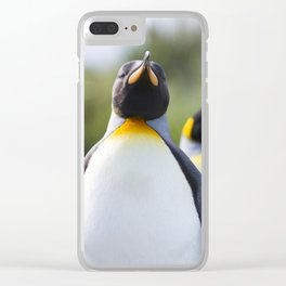 King Penguins Clear iPhone Case