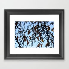 Fade and Fall Framed Art Print