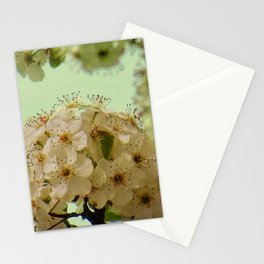 Spring Flowers on mint green background A377 Stationery Cards