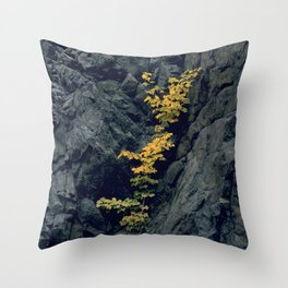 Manifesting HOPE in the Midst of 'Rocky' Places Throw Pillow
