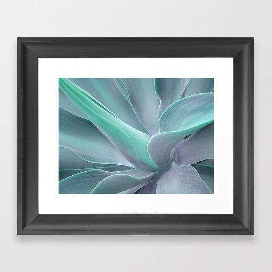 Blue Green Agave Attenuata Framed Art Print