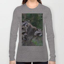 Raccoon_001_by_JAMFoto Long Sleeve T-shirt